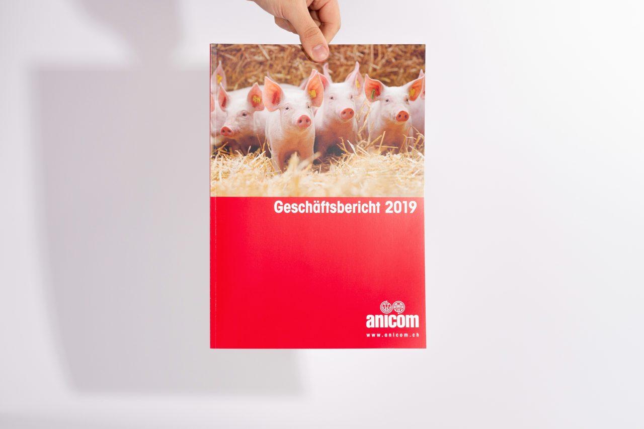 Tanner Druck AG, Geschäftsbericht Anicom